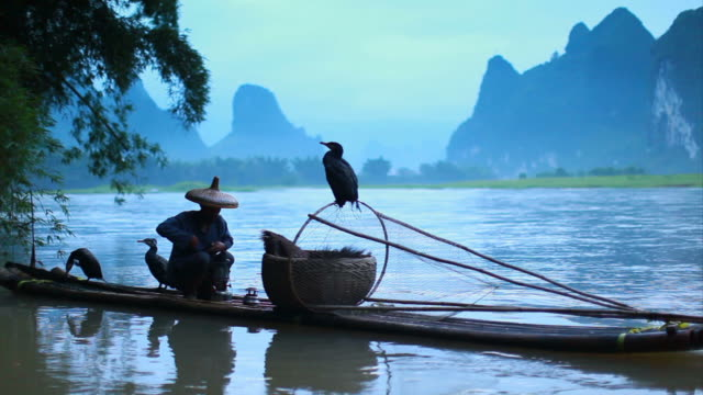 fischer auf fluss li - guilin stock-videos und b-roll-filmmaterial