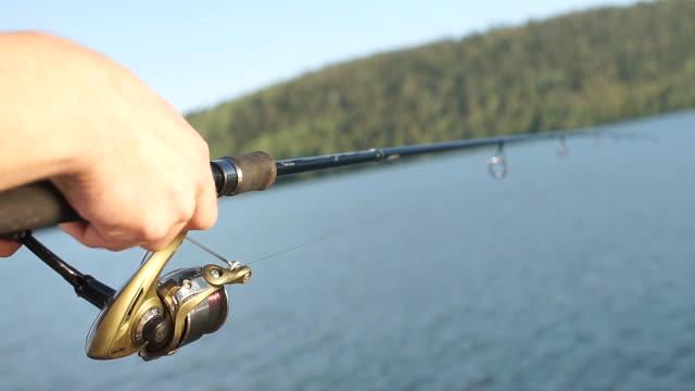 fiskare som försöker fånga fisk på sjön med spö - meta bildbanksvideor och videomaterial från bakom kulisserna