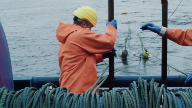 Fisherman Works on Commercial Fishing Ship that Pulls Trawl Net