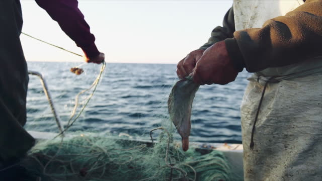 Fishermen at work on the fishing boat: pulling the nets