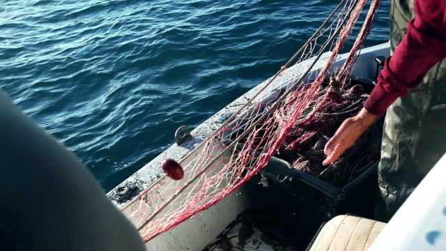 fischer bei der arbeit ziehen fischernetze - netzgewebe stock-videos und b-roll-filmmaterial