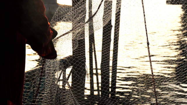 Fishermen Sorting fish in the net video