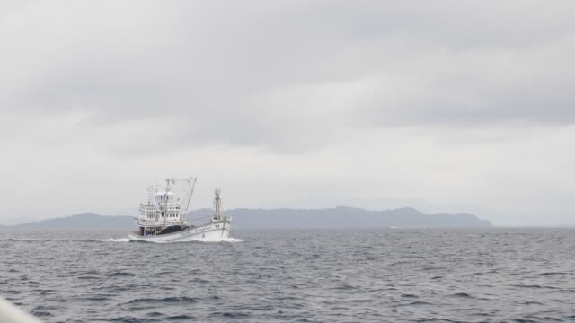 Fishing Boat in the Sea A commercial fishing boat in the sea in slow motion. tuna seafood stock videos & royalty-free footage