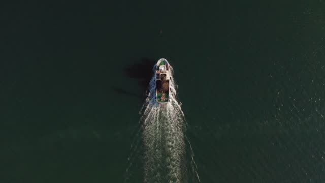 vídeos de stock e filmes b-roll de fishing boat sailing in the sea, aerial view from a drone - fishing boat