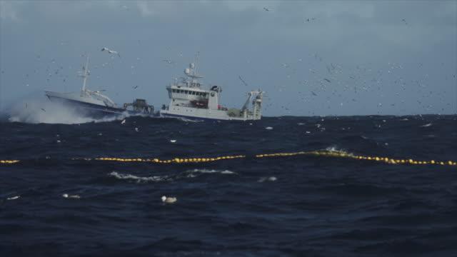 fiskebåt trålare seglar en grov nordsjön - fiskebåt bildbanksvideor och videomaterial från bakom kulisserna