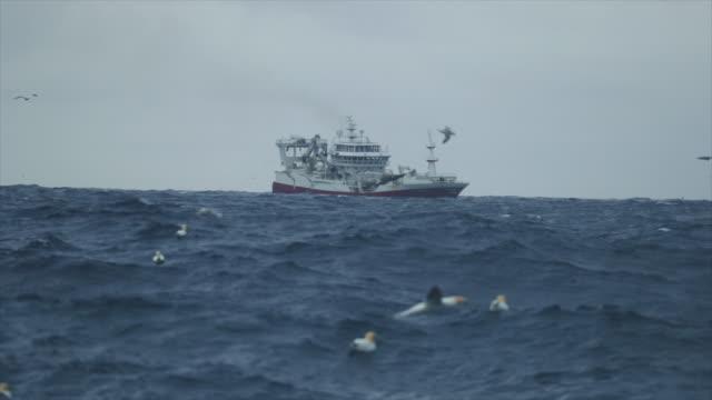 fiske båt trålaren segling vid grov sjö - fiskebåt bildbanksvideor och videomaterial från bakom kulisserna