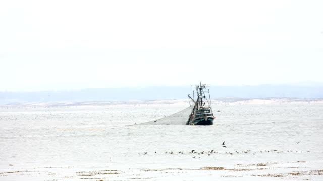 stockvideo's en b-roll-footage met fishing boat - westelijke verenigde staten