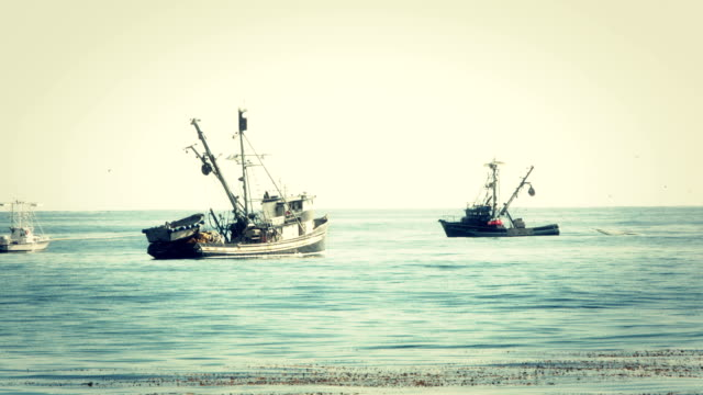 fishing boats 1 - fishing stock videos and b-roll footage