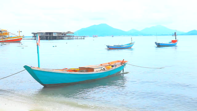 Fishing boats and village. video