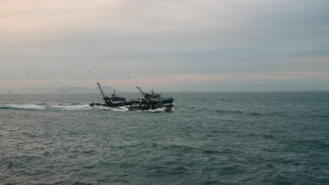 Fishing boats followed by seagulls