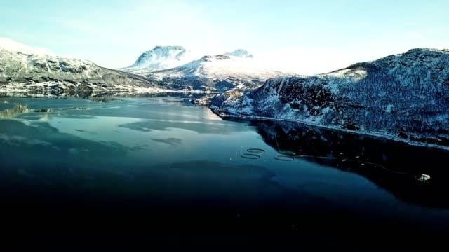 fishing farm in norway at the lofoten - морская рыба стоковые видео и кадры b-roll
