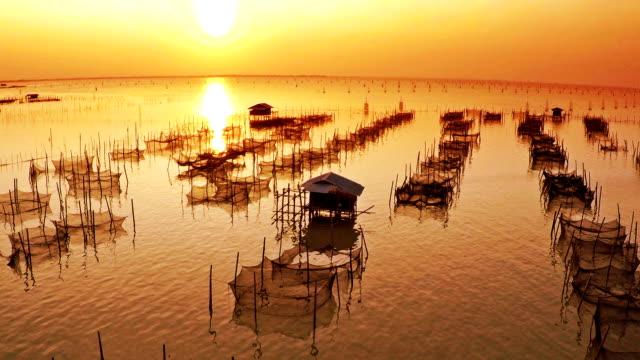 fishing farm no people video