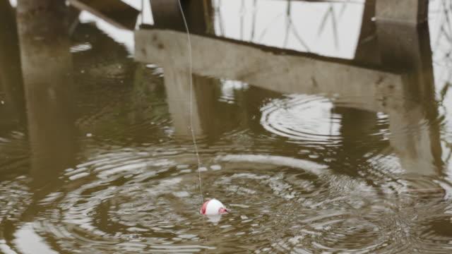 angeln schwimmer bobs auf und ab erstellen wellen, um einen biss zu signalisieren - fischköder stock-videos und b-roll-filmmaterial