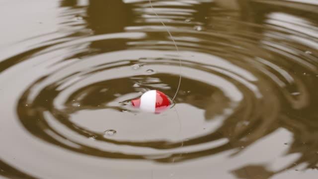 angeln schwimmen auf den wellen im teich aus nächster nähe.   angeln mit einem bobber - fischköder stock-videos und b-roll-filmmaterial
