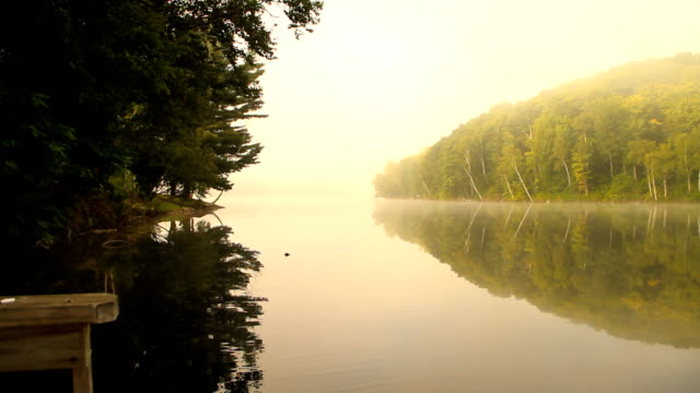 Fishing from dock on misty lake morning video
