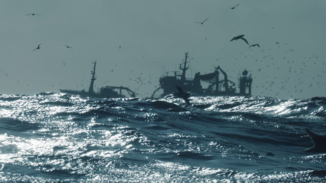 Fishing industry collection: fish boat fishing in a rough sea
