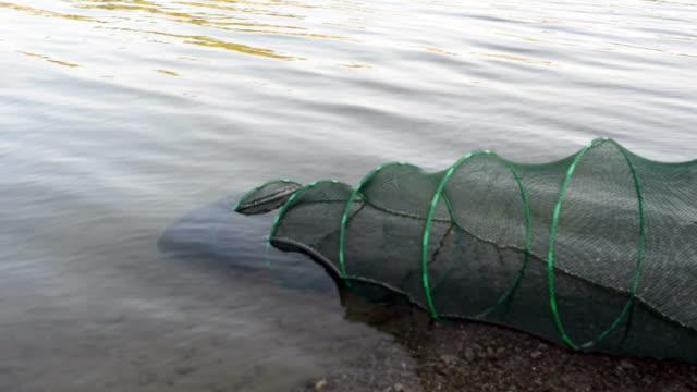 Fishing keepnet in a lake video