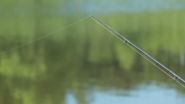 fishing line - meta bildbanksvideor och videomaterial från bakom kulisserna