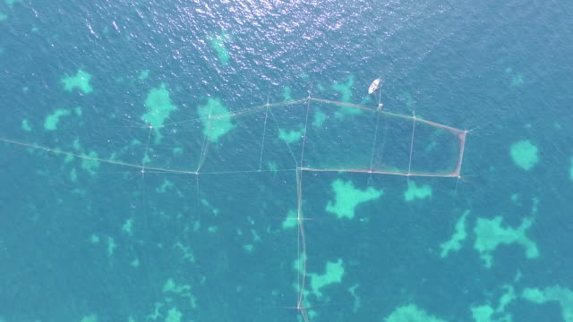 Fishing net for catching fish in the blue sea and little white boat. Aerial drone footage
