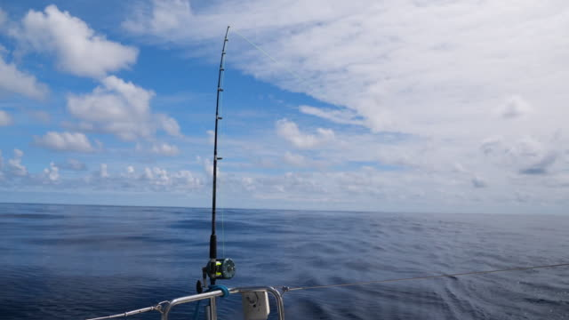 Fishing on a sailboat in ocean Fishing on a sailboat in ocean fishing rod stock videos & royalty-free footage