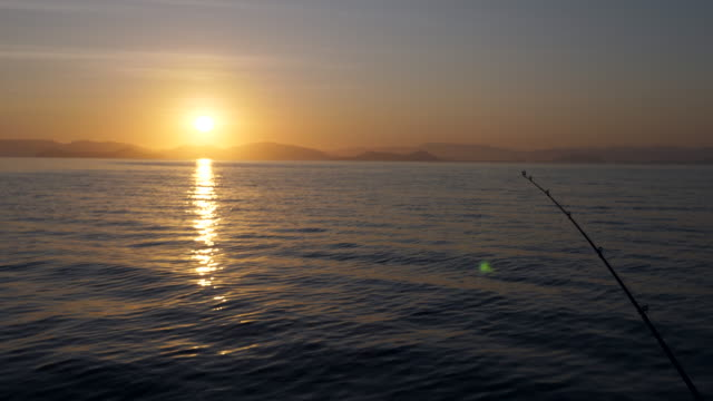 Fishing Rods on Ocean at Sunrise Fishing Rods on Ocean at Sunrise fishing rod stock videos & royalty-free footage