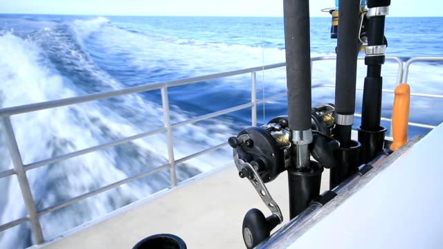 рыболовная прутков - морская рыба стоковые видео и кадры b-roll