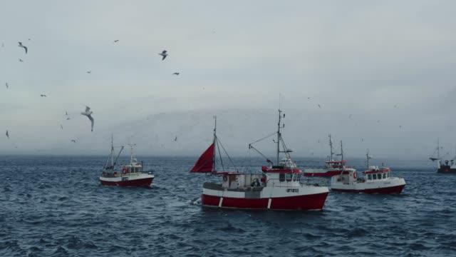 Fishing skrei cod in the arctic sea