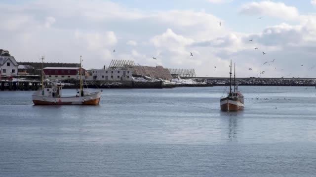 vídeos de stock e filmes b-roll de fishing town of reine on the lofoten archipelago in norway - lofoten