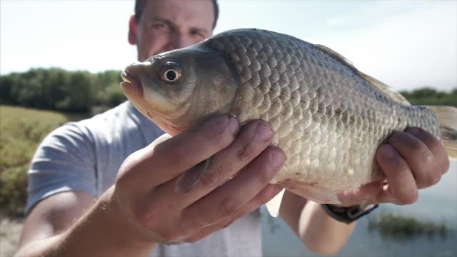 angeln - fang stock-videos und b-roll-filmmaterial