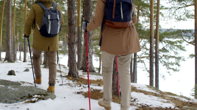 Fit Elderly Couple Hiking with Walking Poles in Snowy Forest