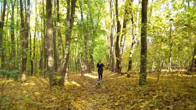 Fit girl canicrossing with American Staffordshire terrier in sunny autumn forest video