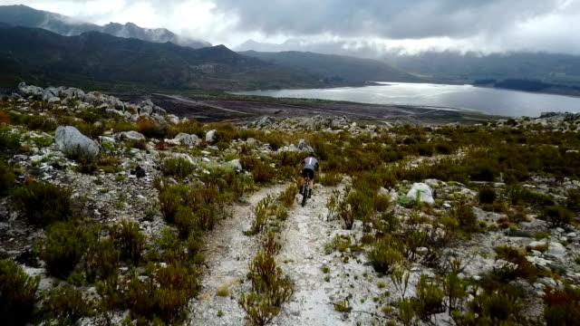 fit mountain biker rides down a trail - percorso per bicicletta video stock e b–roll