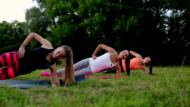 Fit woman doing plank exercise, working on abdominal midsection muscles. Fitness girl core workout in nature video