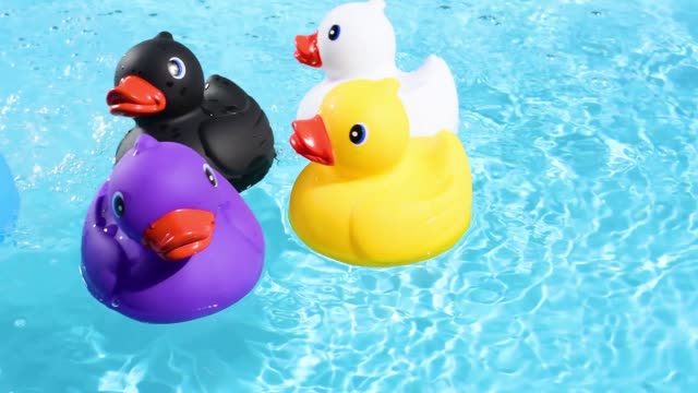 five colourful rubber ducks drift into the picture from all angles, floating relaxed and casually on the sparkling and crystal-clear water of a pool - cinque oggetti video stock e b–roll
