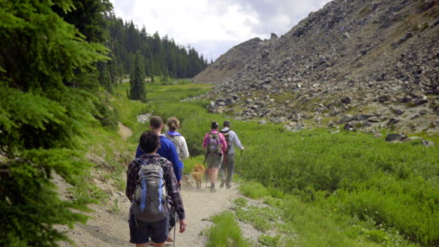 Five friends hiking together video