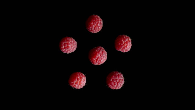 Five isolated red raspberries squished in the studio with black background