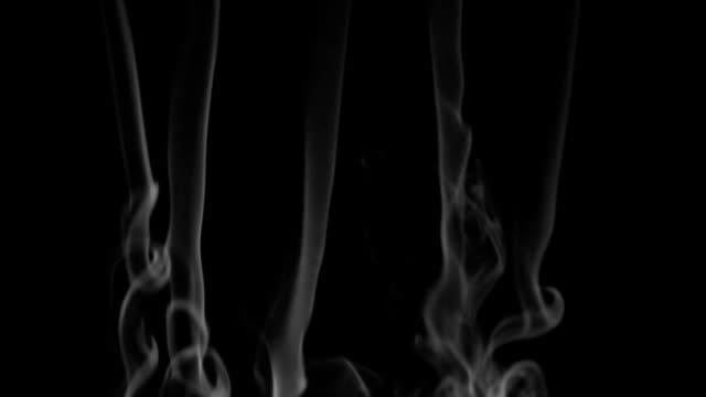 Five lines white smoke on a black background. Beautifully video