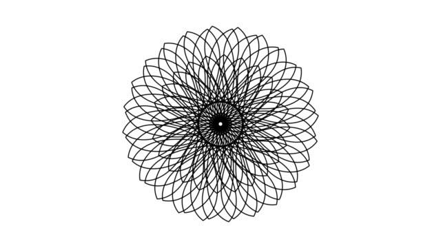 five rosette designs being drawn (hd, ntsc, pal) - blommönster bildbanksvideor och videomaterial från bakom kulisserna