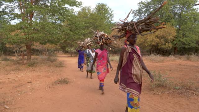 beş kadın onlar yemek ve sıcaklık, zimbabve için yangınlar yapmak için toplanan başlarını yakacak odun dengeleme eve yürüyor - şömine odunu stok videoları ve detay görüntü çekimi
