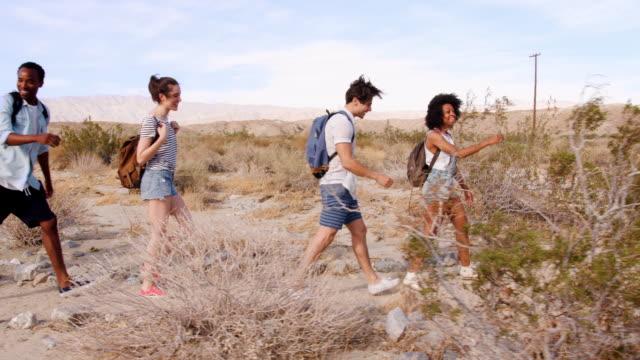 パーム ・ スプリングスの砂漠、側面ビューでハイキング若い大人 5 人 - 全身点の映像素材/bロール