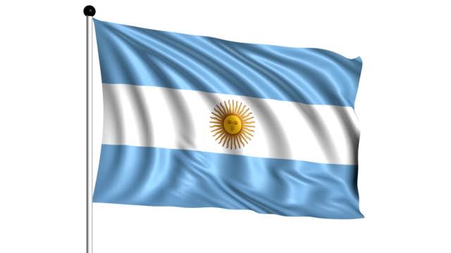 bandiera dell'argentina-loop (canale alfa) - bandiera dell'argentina video stock e b–roll