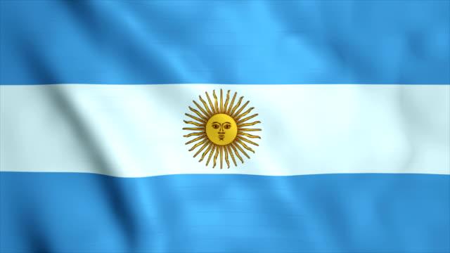 flag of argentina - bandiera dell'argentina video stock e b–roll