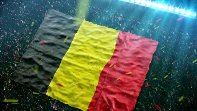 Flag of Belgium at the stadium video