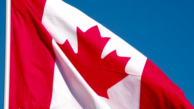 Flag of Canada Fluttering in the Wind