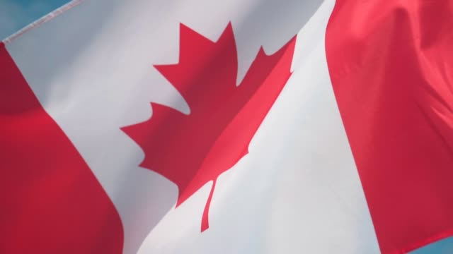 flag of canada. the flag of canada develops in the wind against a sky. - canada day stock videos & royalty-free footage