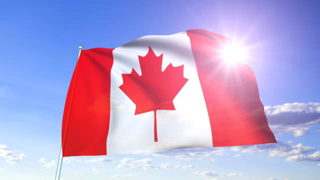 flag of canada (looping) - canada flag stock videos & royalty-free footage