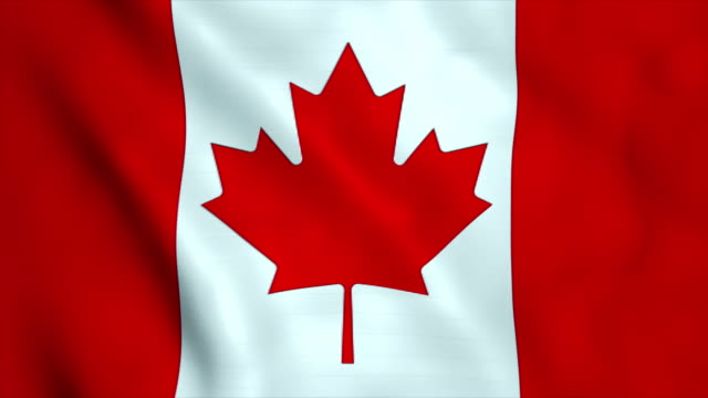 flag of canada - canada flag stock videos & royalty-free footage