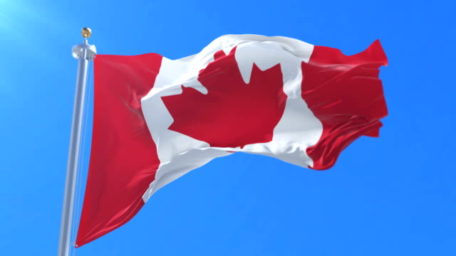 flag of canada waving at wind in blue sky, loop - canada flag stock videos & royalty-free footage