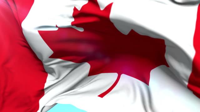 Flag of Canada waving at wind, loop video