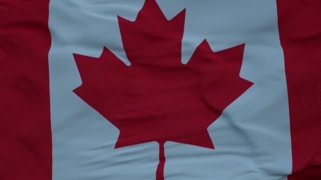 flagge von kanada winkt im wind gegen tiefe schöne wolken himmel - ahorn stock-videos und b-roll-filmmaterial
